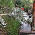 Limpieza y conservacion del cauce del río Queiles - Obra hidráulica - Solceq